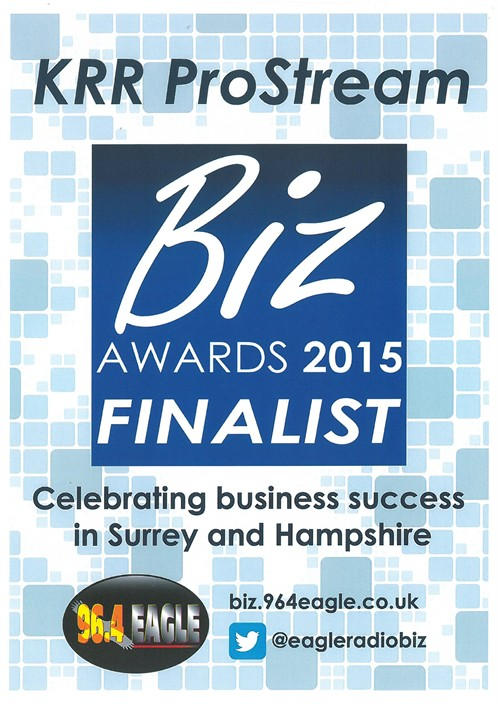 Biz Awards 2015